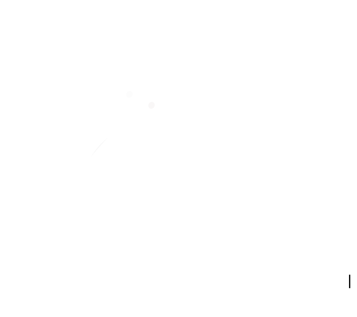 The Chef's Advice